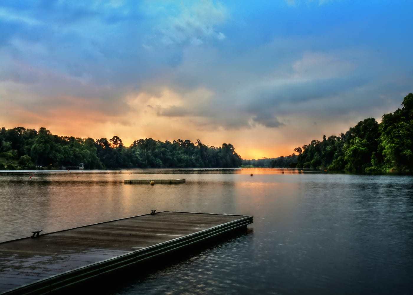 things-to-do-with-kids-in-singapore-macRitchie