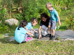 International schools in Singapore with eco-friendly ethics and green spaces