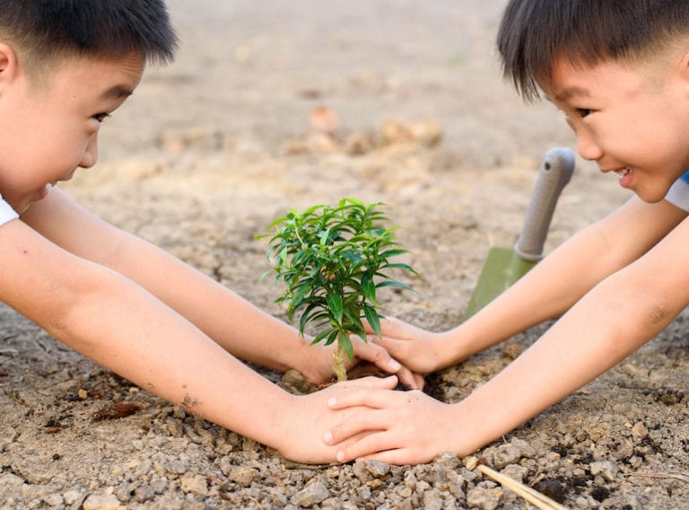 Urban gardening in Singapore: Get your city kids planting and growing their own food