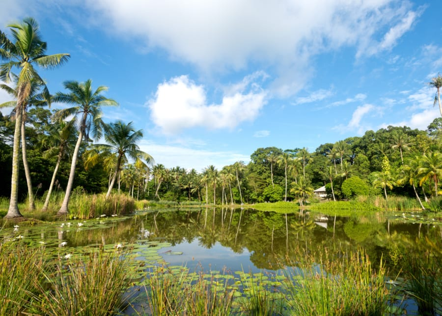 Ultimate Pulau Ubin Guide: How to get there & all the fun things to do with kids in tow!